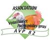 logo_avp82
