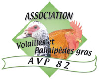 logo_avp82_200px